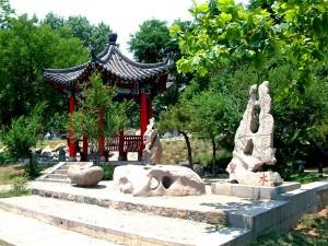 Taishan Medical University